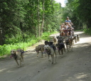 Chena cart ride