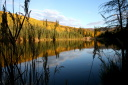 autumn beaver pond
