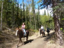 horseback riding down the trail